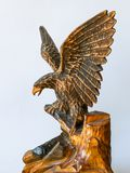 Figur mountain eagle stock images