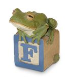 Carved Wooden Frog on Child's Block Stock Images