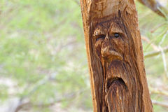 Carved Wooden Log Man Face Stock Photo