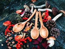 Carved wooden spoon in wood, woodwork, colors of autumn. Carving Wood Spoons Spoon Mushrooms Fungi Cones Birch Nuts Autumn Berries Leaves Colors Woodwork Stock Photography