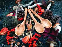 Carved wooden spoon in wood, woodwork, colors of autumn. Carving Wood Spoons Spoon Mushrooms Fungi Cones Birch Nuts Autumn Berries Leaves Colors Woodwork royalty free stock image