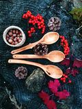 Carved wooden spoon in wood, woodwork, colors of autumn. Carving Wood Spoons Spoon Mushrooms Fungi Cones Birch Nuts Autumn Berries Leaves Colors Woodwork Stock Photo