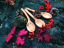 Carved wooden spoon in wood, woodwork, colors of autumn. Carving Wood Spoons Spoon Mushrooms Fungi Cones Birch Nuts Autumn Berries Leaves Colors Woodwork Royalty Free Stock Photos