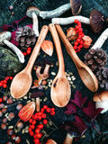 Carved wooden spoon in wood, woodwork, colors of autumn. Carving Wood Spoons Spoon Mushrooms Fungi Cones Birch Nuts Autumn Berries Leaves Colors Woodwork Royalty Free Stock Images