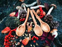 Carved wooden spoon in wood, woodwork, colors of autumn. Carving Wood Spoons Spoon Mushrooms Fungi Cones Birch Nuts Autumn Berries Leaves Colors Woodwork Stock Images
