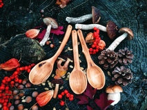 Carved wooden spoon in wood, woodwork, colors of autumn. Carving Wood Spoons Spoon Mushrooms Fungi Cones Birch Nuts Autumn Berries Leaves Colors Woodwork royalty free stock photo