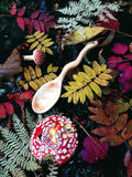 Carved wooden spoon in wood, woodwork, colors of autumn. Carving Wood Spoons Spoon Mushrooms Fungi Cones Birch Nuts Autumn Berries Leaves Colors Woodwork Fern Stock Photography