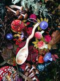 Carved wooden spoon in wood, woodwork, colors of autumn. Carving Wood Spoons Spoon Mushrooms Fungi Cones Birch Nuts Autumn Berries Leaves Colors Woodwork Fern royalty free stock photos