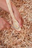 carving Foto de Stock Royalty Free