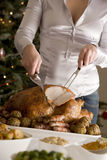 Carving Christmas Roast Turkey Stock Photography