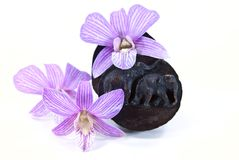 The carving of elephant wood box Royalty Free Stock Photos