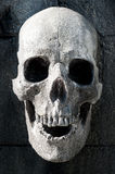 Carving gravestone skull cemetery. Carving gravestone skull in cemetery Royalty Free Stock Photo