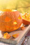 Carving a Jack O& x27;Lantern for Halloween Royalty Free Stock Image