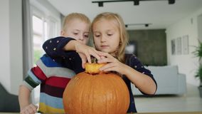 Carving pumpkins. Handheld view of drilled pumpkin and curious children stock video
