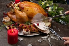 Carving Rustic Style Christmas Turkey. Carving rustic style roasted Christmas turkey garnished with roasted garlic, lemon, and rosehips. Surrounded with rustic Royalty Free Stock Photography