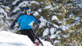 Carving skier in powder snow Royalty Free Stock Photography