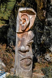 Carving tree trunk sensory organs Stock Photos