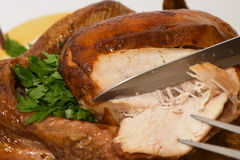 Carving turkey Stock Photography