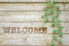 Carving welcome sign on wood background. Royalty Free Stock Image