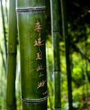 Carvings de bambu Imagens de Stock
