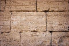 Carvings de Templo de Luxor fotografia de stock