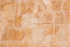 Carvings jeroglíficos fotografia de stock