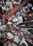 Carvão Smoldering Fotos de Stock Royalty Free
