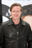 Cary Elwes Stock Afbeelding