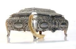 Cas argenté avec le jewelery Photographie stock libre de droits