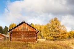 Casa abandonada del bosque Imagen de archivo libre de regalías