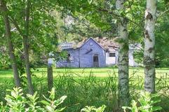 Casa abandonada e dilapidada remota em Wisconsin rural quadro por árvores fotos de stock