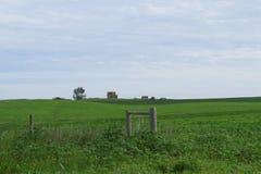 Casa abandonada em um campo verde infinito Fotografia de Stock Royalty Free