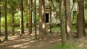 Casa abandonada en el tiro liso y lento del bosque del carro metrajes