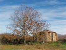 Casa abandonada en Grecia meridional imagen de archivo