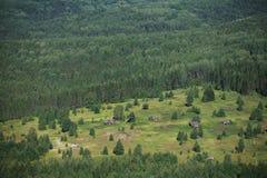 Casa abandonada nas madeiras, opinião superior da vila velha do russo Fotografia de Stock Royalty Free