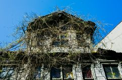 Casa abandonada velha coberta dos ramos em Istambul, Turquia fotos de stock