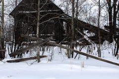 Casa abandonada y un perro en invierno foto de archivo libre de regalías