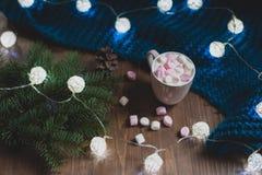 Casa accogliente di inverno Fotografie Stock Libere da Diritti