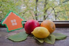 Casa accogliente Frutti luminosi dell'autunno Immagine Stock