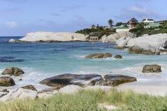 Casa africana bonita do ` dos pinguins fotos de stock royalty free