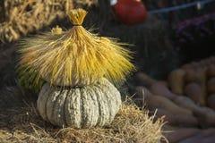 A casa agradável feita da abóbora orgânica natural e seca as orelhas completas Decoração, símbolo por feriados, especialmente sob Imagem de Stock
