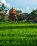 Casa agradable en una terraza del arroz Fotos de archivo libres de regalías