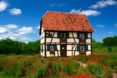 Casa Alsatian Imagem de Stock Royalty Free
