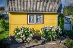 Casa amarela Imagem de Stock Royalty Free
