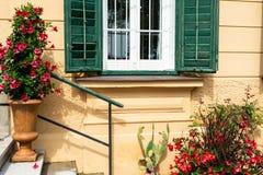 Casa amarilla con los obturadores verdes al lado de los cuales hay flores rojas hermosas imagen de archivo libre de regalías
