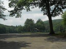 Casa americana nella foresta fotografie stock libere da diritti