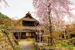 Casa antica con sakura Fotografia Stock Libera da Diritti
