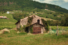 Casa arruinada velha Imagem de Stock Royalty Free
