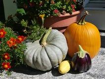 Casa: as abóboras e as flores da entrada da queda do outono fecham-se Fotos de Stock Royalty Free