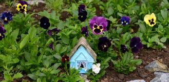 Casa azul bonito em flores da viola Foto de Stock Royalty Free